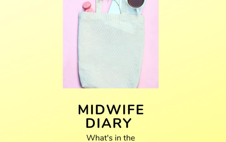 Midwife Diary 4
